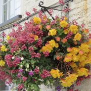 blooming-baskets-pub-flowers-by-post221